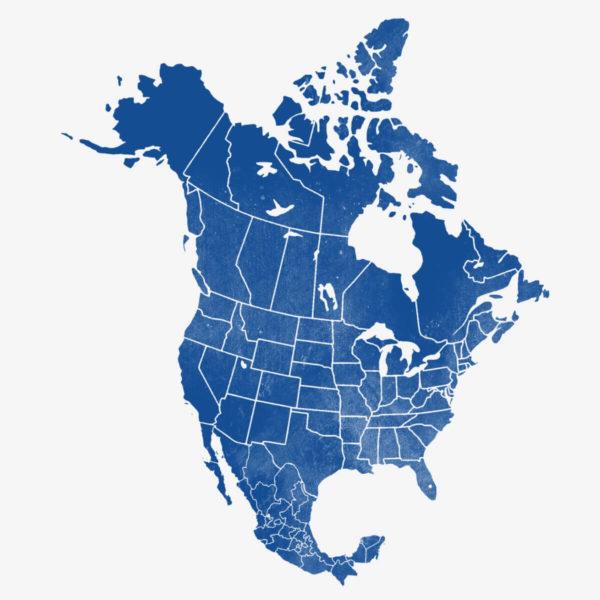 Steaguri din America de Nord