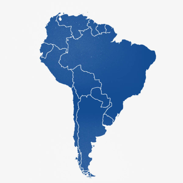 Steaguri din America de Sud